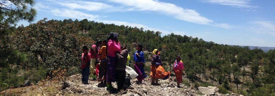 Gasoducto CFE-TrasnCanada pone en riesgo a 70 pueblos rarámuri